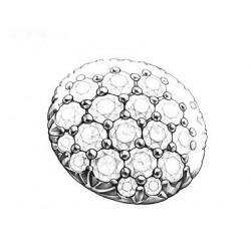 Set Argint Tin Cup Crem 2
