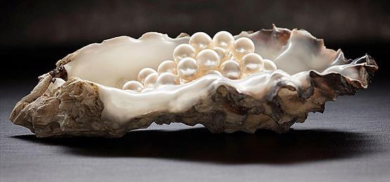 perle de cultura